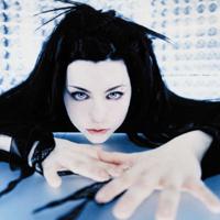 Evanescence: vale o ingresso!